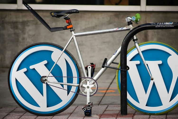 Cyber Criminals Know Your WordPress Weakness, Do you?